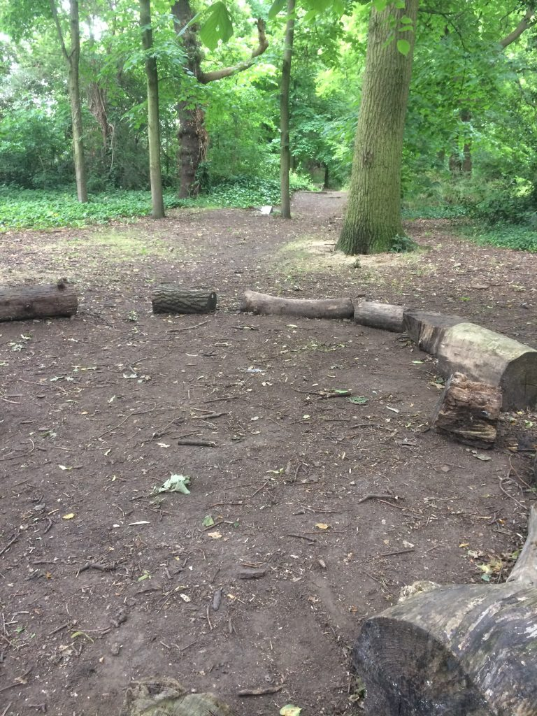 A circle of cut logs for children to sit on in the woods